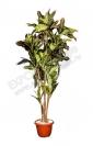 Растение - Листья дуба 110 см.